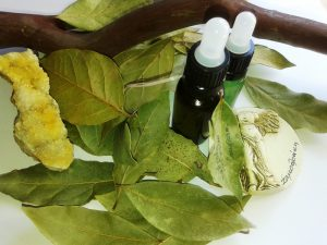 Дарове от о. Самотраки: дафинови листа и биомасло, кристали и дървета.